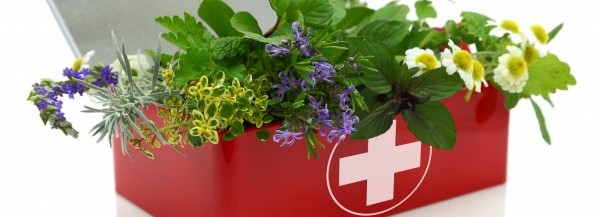 Healing Remedies 101: Naturopathic First Aid Kit